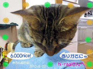 thanksnice!6000.jpg