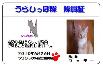 urashippo-no.6-lucky.jpg